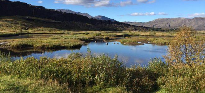 Perché l'Islanda è il paese del futuro Che Futuro!
