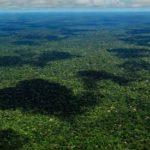 Tutti per l'Amazzonia